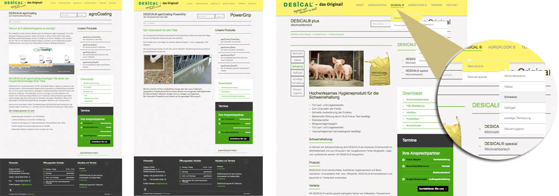 Website Desical
